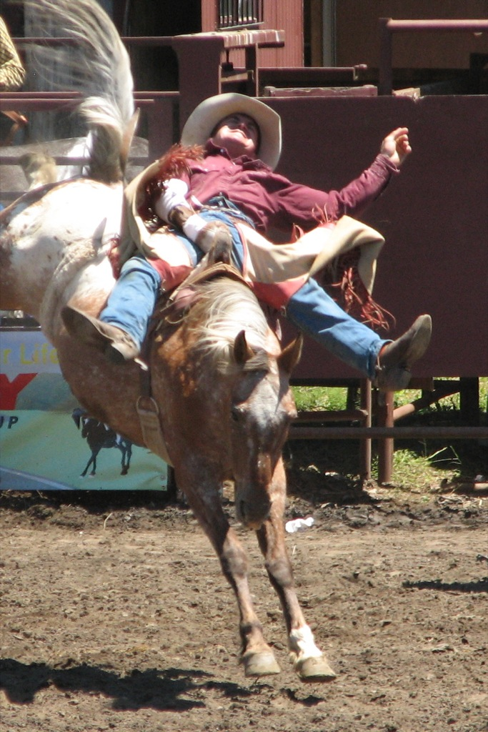 Greeley Stampede Series: Rodeo Events