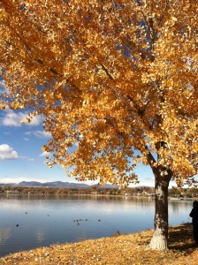Fall at Sloan's Lake